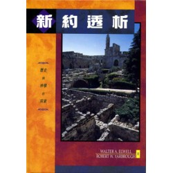 Encountering the New Testament (Traditional Chinese Translation)