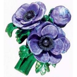 Anemones, purple